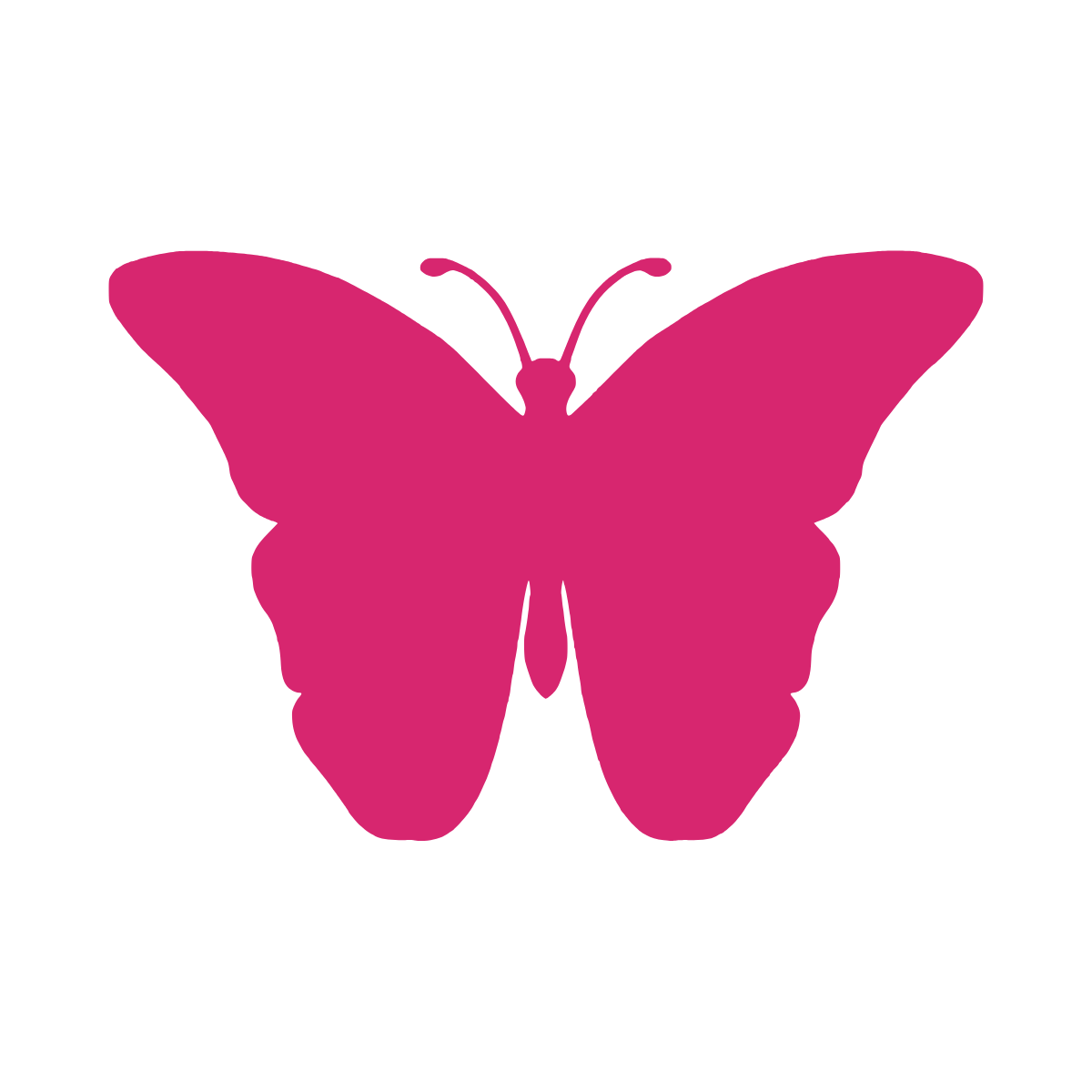 Erin Butterfly Graphic